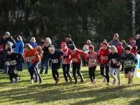 Crosslauf 2012 2013